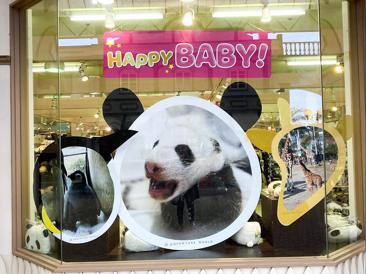 """Love Story of Panda """"Hama Family"""""""