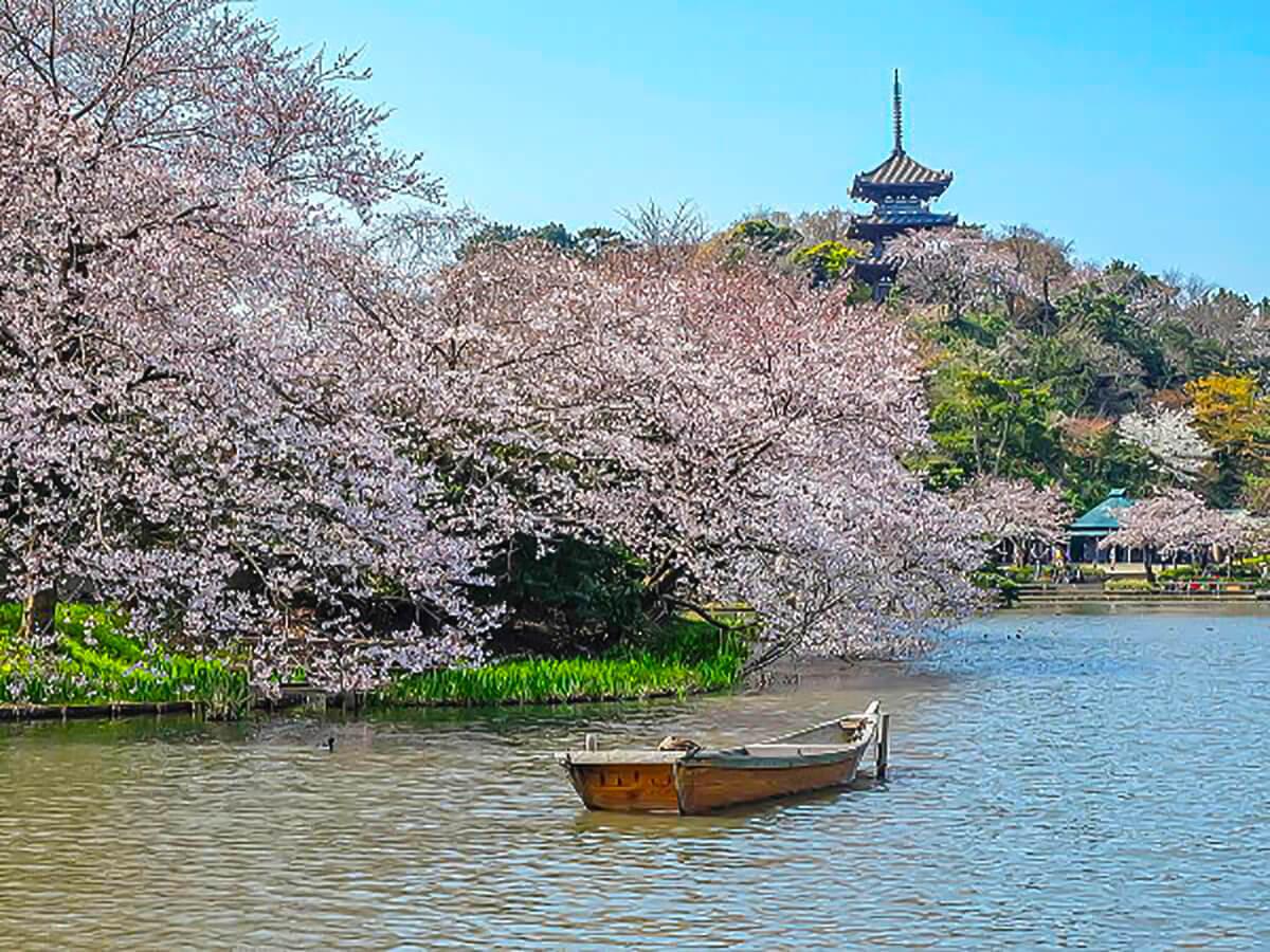 Let's go to Sankei-en, unwind and enjoy a great Japanese garden in Yokohama