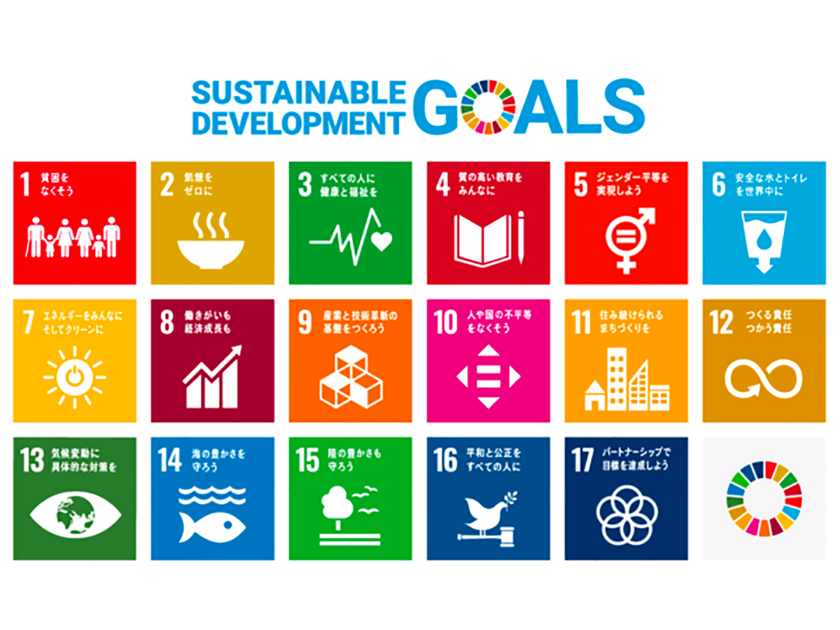 SDGs : a second Earth is needed.